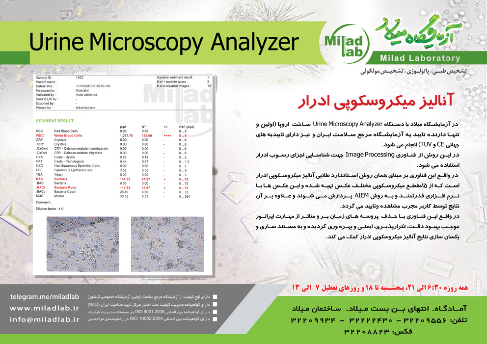 Analyzer2